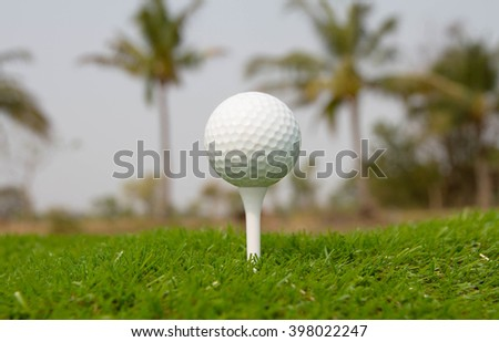 Golf ball in tee on the grass - stock photo
