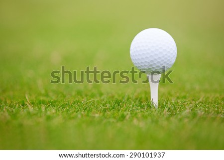 Golf ball on a green lawn. Close-up photo - stock photo