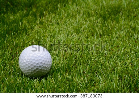 Golf ball on grass - stock photo