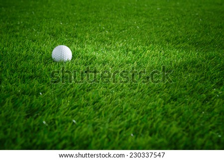 Golf ball on green grass in golf course - stock photo