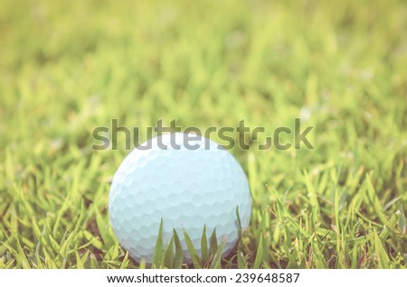 Golf ball on green grass  - vintage effect style pictures - stock photo