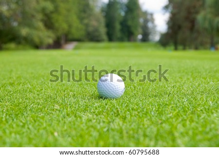 Golf ball on green over a blurred green. Shallow depth of field. Focus on the ball. - stock photo