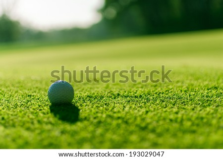 Golf ball on the course in the opposite light, in the shadow - stock photo