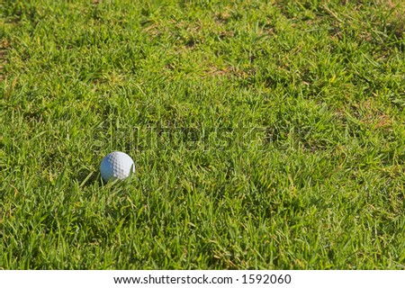 Golf ball on the grass. Copy space. - stock photo