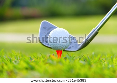 Golf ball on the green grass. - stock photo