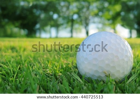 Golf ball on the lawn - Golf Background. - stock photo