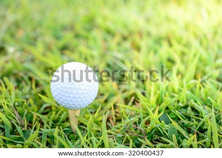 Golf ball with tee on early moning sun light. - stock photo
