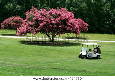 Golf Cart in front of Crape Myrtle - stock photo