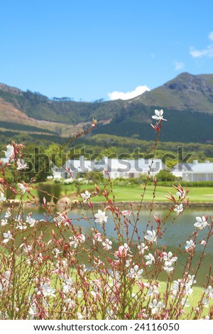 Golf course landscape with few houses in the mountains on a beautiful summer day. Focus is on the flowers in front - stock photo