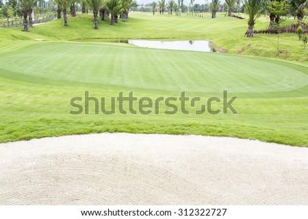 Golf courses , green grass - stock photo