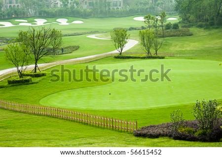Golf grass tree - stock photo