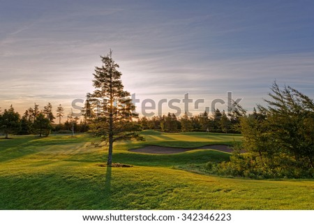 Golf green in early morning - stock photo