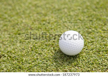 Golf is a sport and businesses.  - stock photo