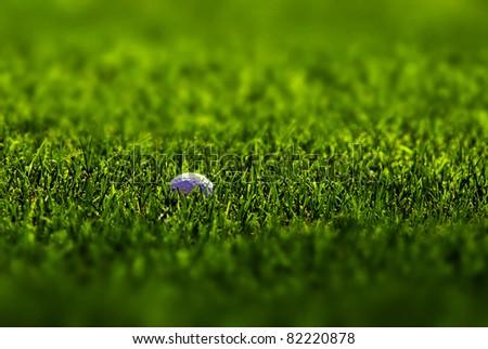 Golfball lying in lush green grass on the fairway - stock photo