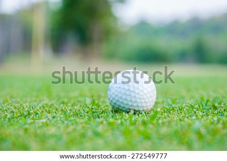 Golfball on grass - stock photo