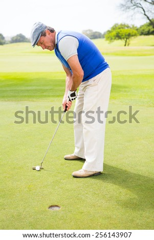 Golfer on the putting green at the hole at the golf course - stock photo