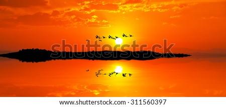 gonden sunset - stock photo