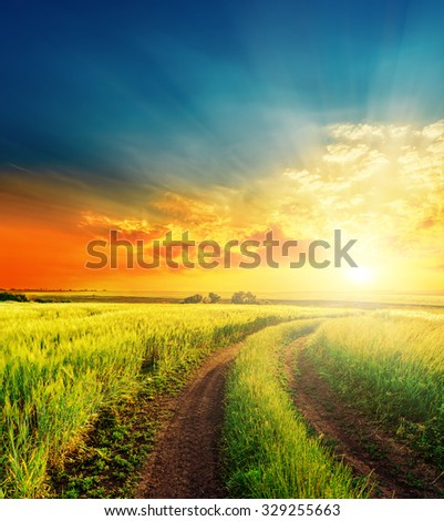 good sunset and road in green fields - stock photo