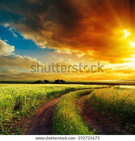 good sunset over winding road in field - stock photo