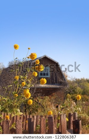 good weather in the summer village - stock photo