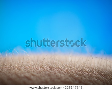 Goose bumps - stock photo