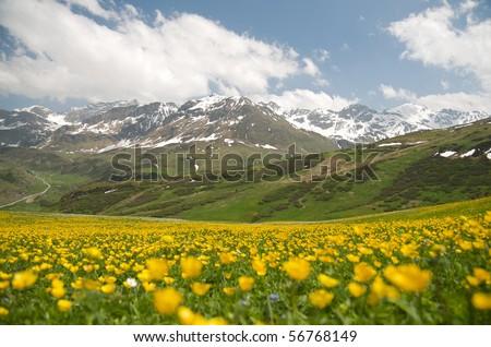gorgeous alpine landscape of eastern switzerland - stock photo