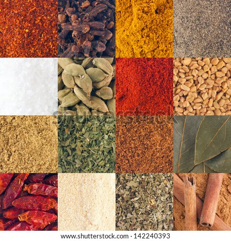 gorgeous collection of 16 spices (piri piri, cloves, curry, pepper, salt, cardamom pods, paprika, fenugreek, coriander, parsley, garam masala, bay leaves, chili, garlic, oregano, cinnamon sticks) - stock photo