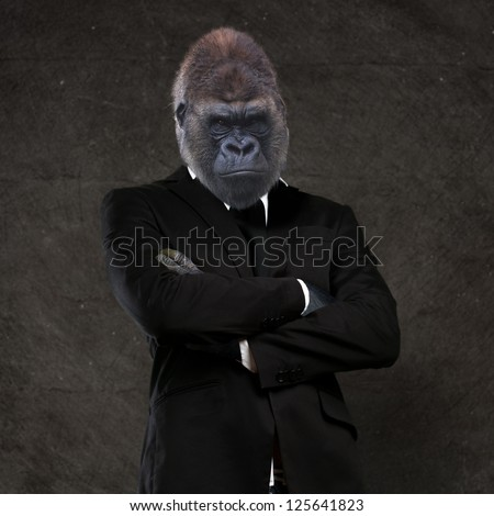 Gorilla businessman wearing a black suit against a grunge background - stock photo