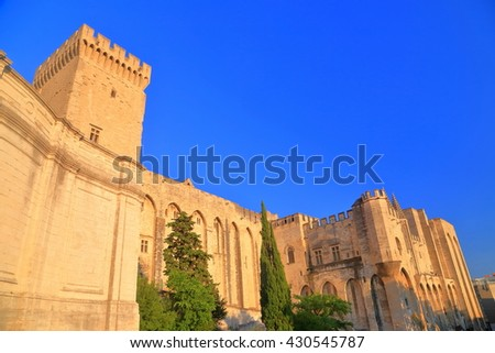 Gothic building of the Papal Palace (Palais des Papes) at sunset, Avignon, Provence, France - stock photo