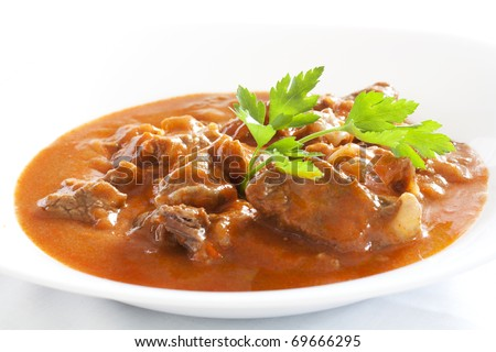 Goulash stew with parsley served in white bowl - stock photo
