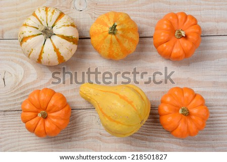 Gourds and pumpkins from a high angle on a white rustic wooden table. Horizontal format. - stock photo