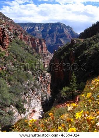 gourgeous spring in Grand Canyon, Arizona, USA - stock photo