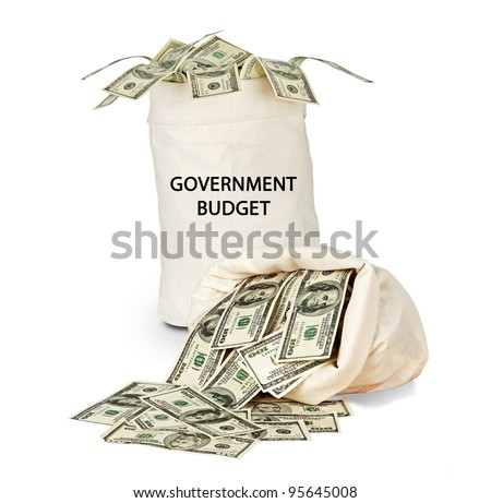 Government budget - stock photo