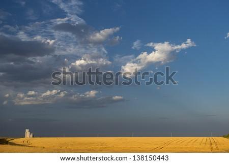 Grain silo over a golden wheat field, Kansas, USA - stock photo
