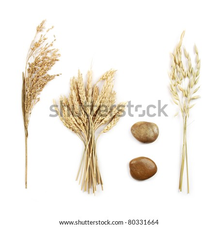 Grains and decorative stones, on white background - stock photo