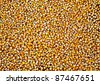 Grains of maize background - stock photo