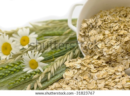 Grains of oats and oats flakes in a white bowl - stock photo