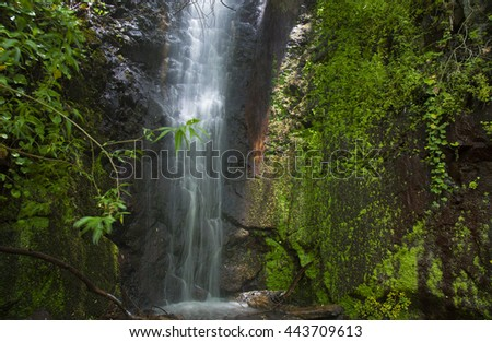 Gran Canaria, waterfall in the ravine Barranco de La Mina, one of the three places where water runs always - stock photo