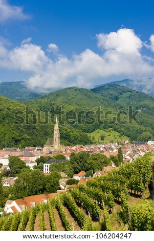 grand cru vineyard, Thann, Alsace, France - stock photo