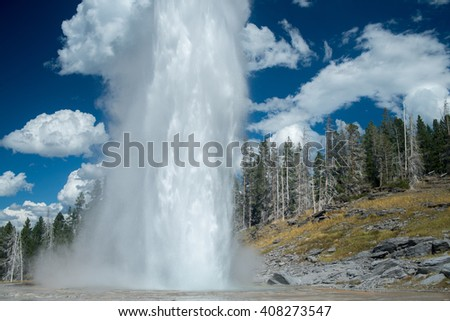 Grand Geyser, the tallest predicable geyser known, erupts two hundred feet in the air at Yellowstone National Park. - stock photo