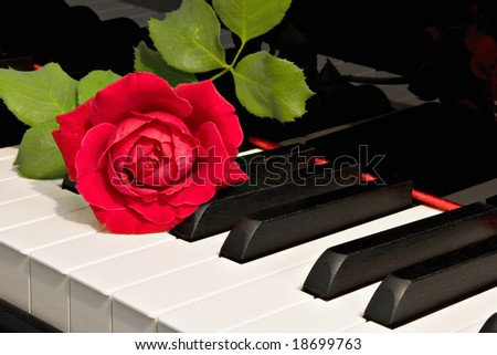 grand piano with red rose - stock photo