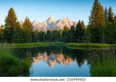 Grand Teton Mountain and Pine tree reflections - stock photo