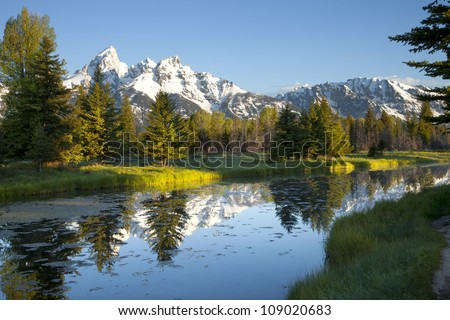 Grand Tetons and pond in morning light - stock photo