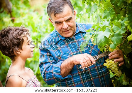 Grandfather and his grandchildren in vineyard - Stock Image - stock photo