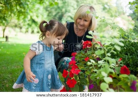Grandmother and her granddaughter are looking flowers in the park - stock photo