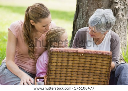 Grandmother mother and daughter with picnic basket sitting at the park - stock photo