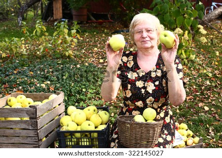 grandmother with apples harvest on the autumn garden background - stock photo