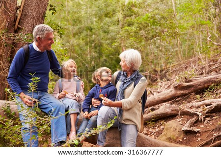 Grandparents and grandchildren eating together in a forest - stock photo