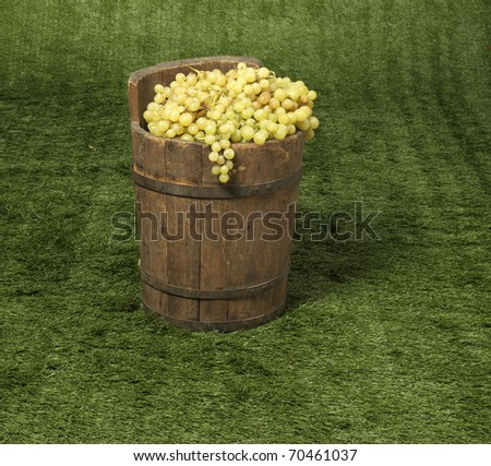 grape in a boot - stock photo