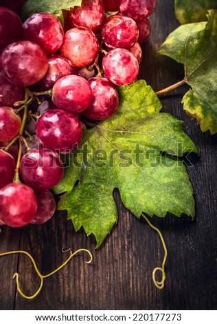Grape leaf on dark wooden table  - stock photo